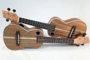 ukulele lessons inner west sydney